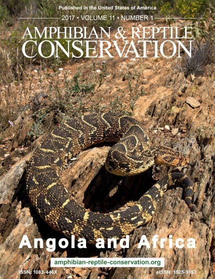 ARC Angola and Africa Continued Issue 2017